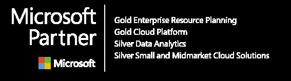 Microsoft Gold Partner 2020 Logo