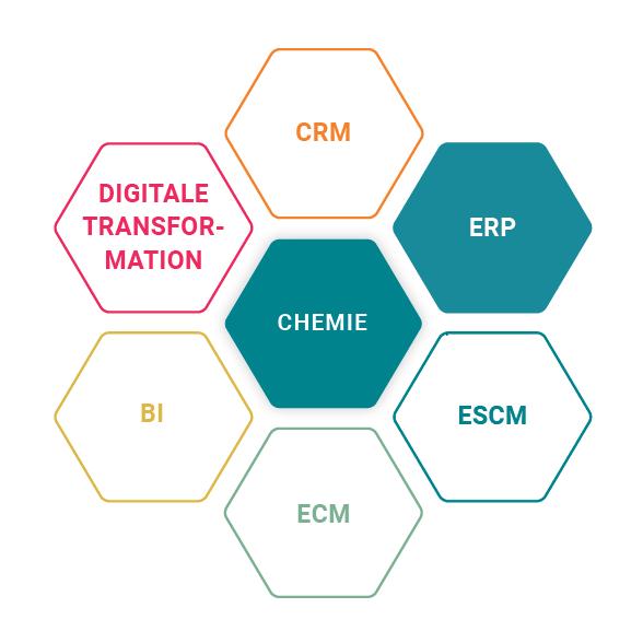 ERP bei Schweitzer Chemie für die Chemie Branche