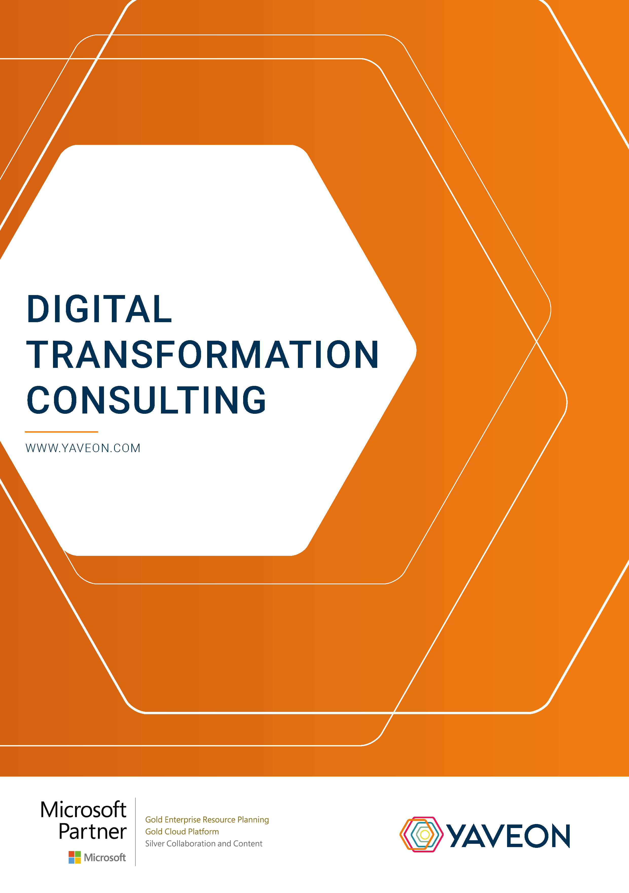 Preview Factsheet Digital Transformation Consulting