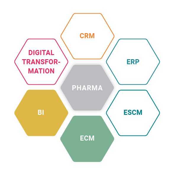 ProE-SCM and BI for hameln pharma for the pharma industry
