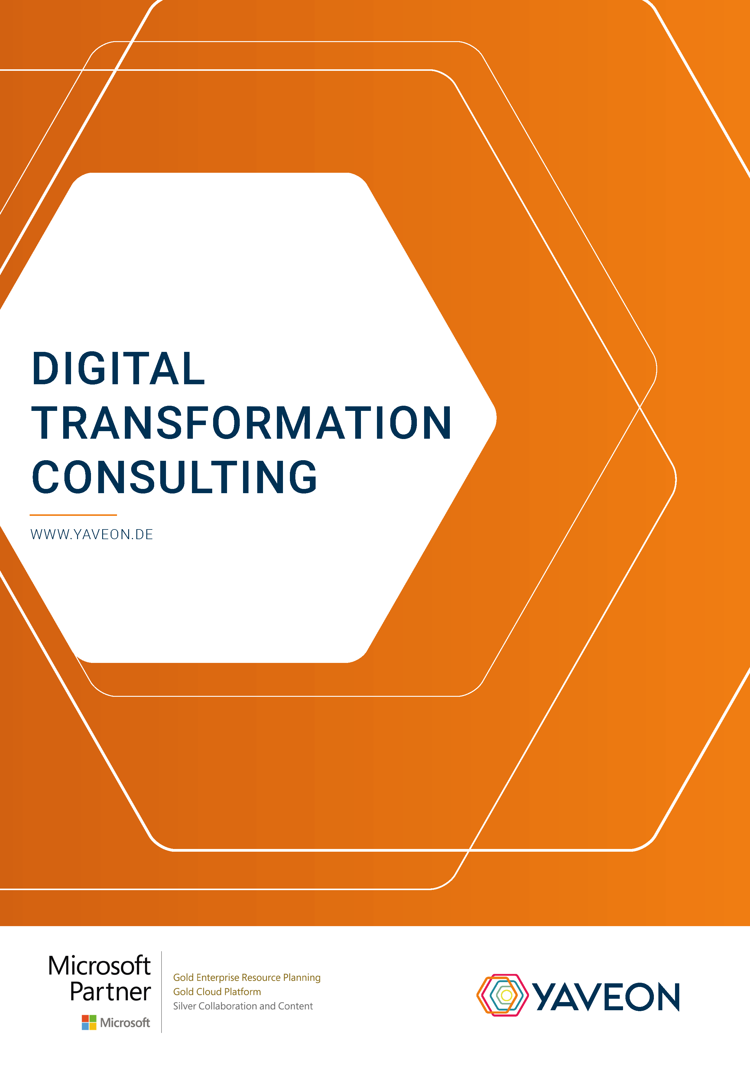 Vorschau Digital Transformation Consulting Factsheet