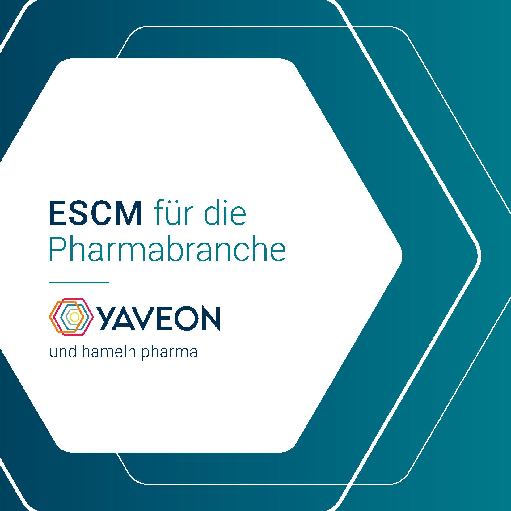 Vorschau Referenzbericht Hameln ESCM
