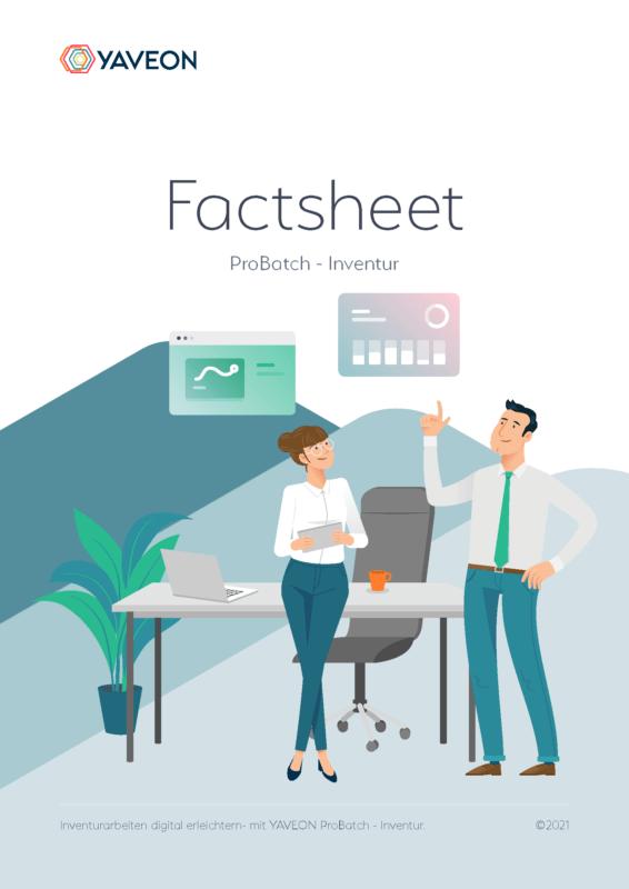 Vorschau Factsheet ERP-Inventur