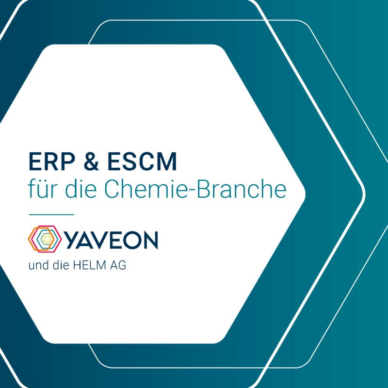 Vorschau Referenzbericht Helm ERP und ESCM